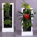 Mini ogród wertkalny, zielnik